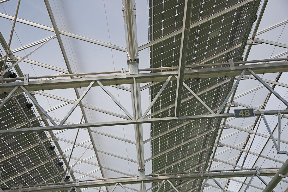 Solarstrom Aus Dem Gewachshaus Eppenberger Media Gmbh