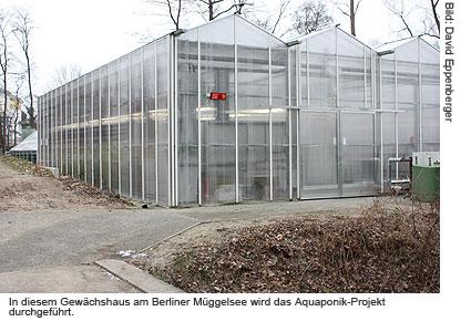 Gewächhaus am Müggelsee